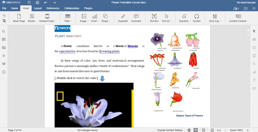 Create vivid worksheets with ONLYOFFICE