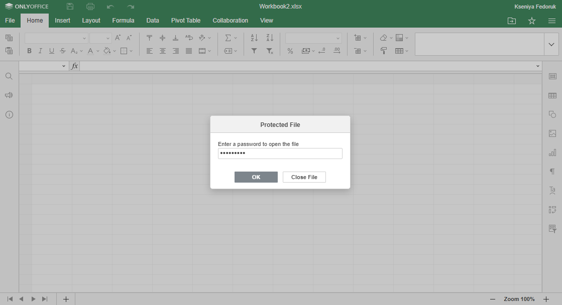 How to protect an Excel file with a password